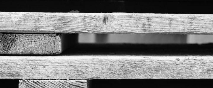 Schaufenster: fit durch die Freisinger Baustellen