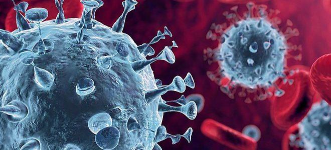 Informationen zum Corona Virus